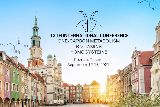 13Hcy.. czyli…. niezwykła międzynarodowa konferencja hybrydowa..